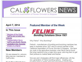 California Flower Growers and Shippers Newsletter